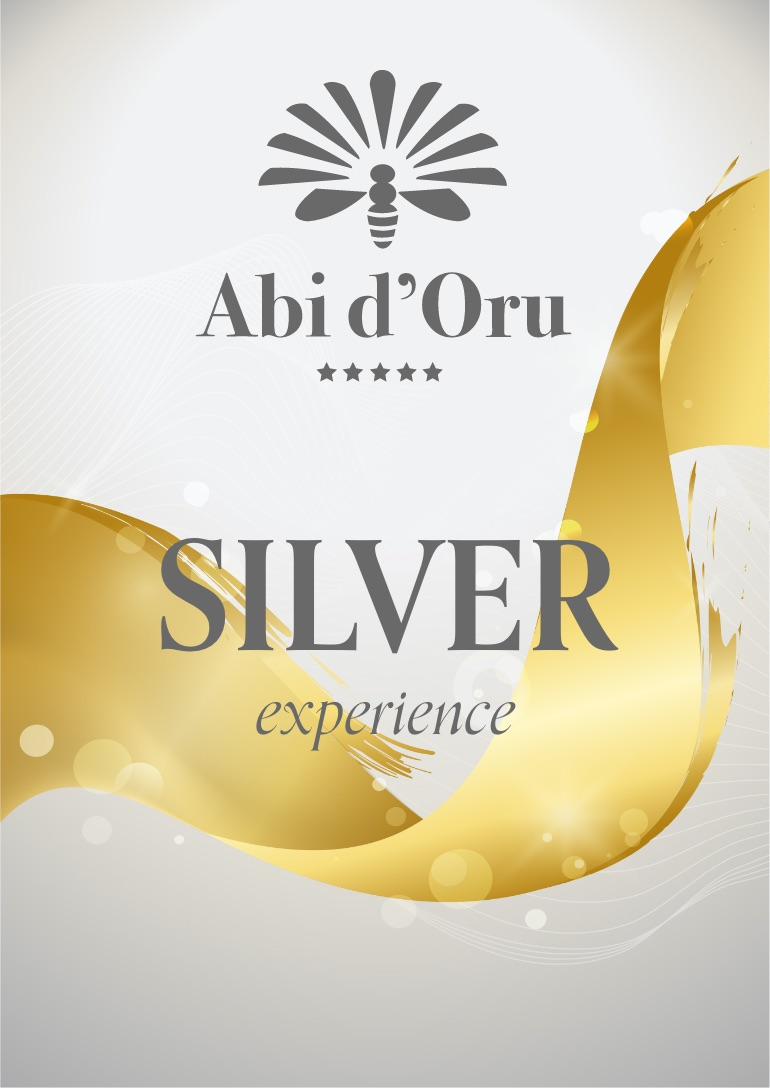 abi experience silver pack